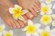 ist1_3282330-frangipani-therapy-feet
